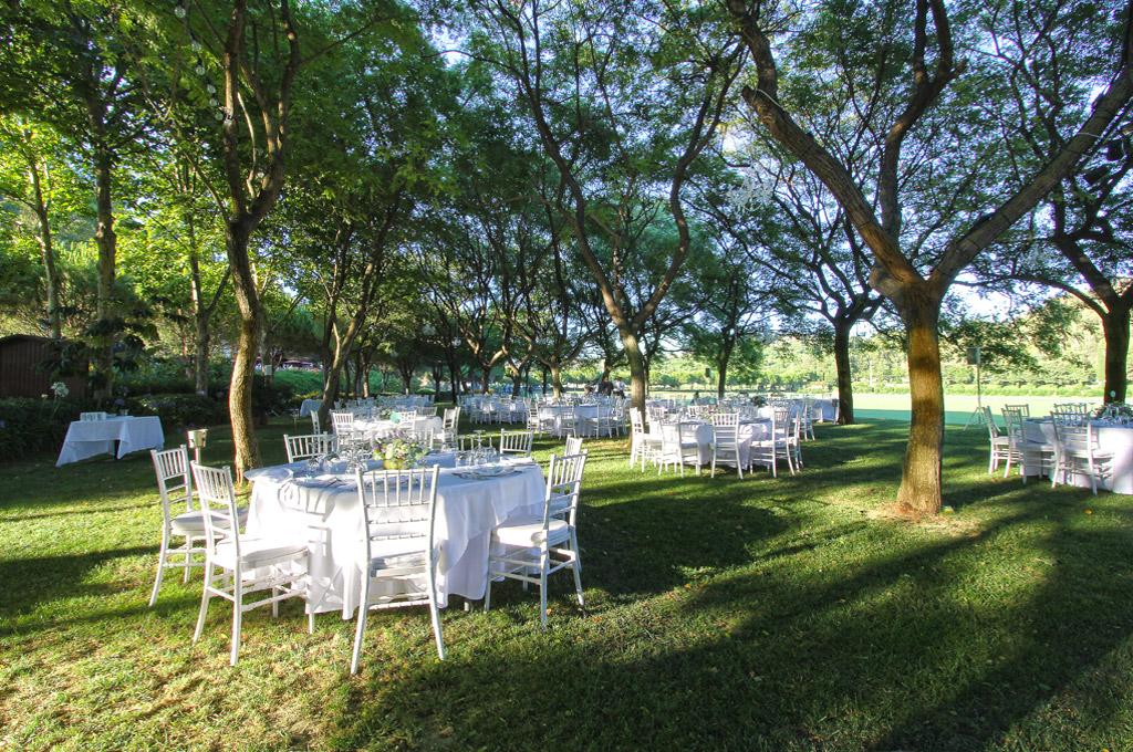 wedding wedding planner